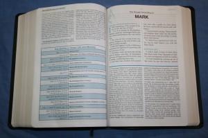 Apostolic Study Bible 010
